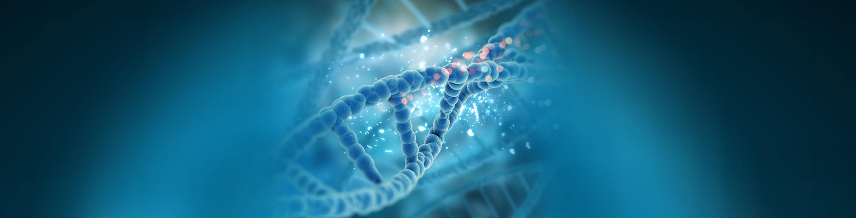 DNA Testing Division